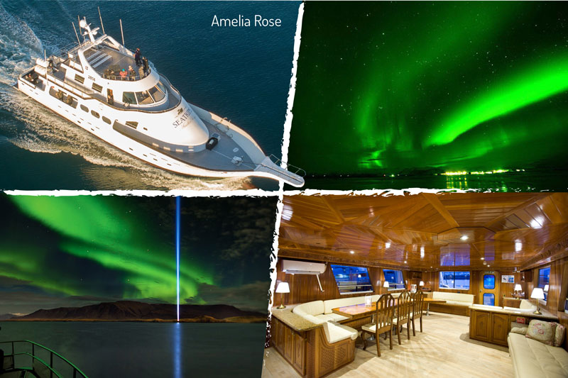 Northern-Lights Cruise