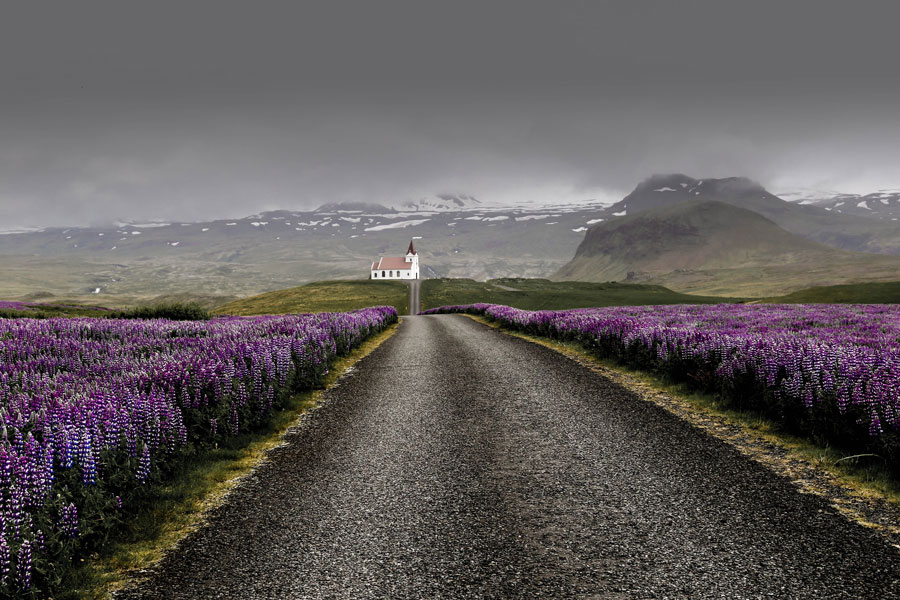 Thinking about driving the Iceland Ring Road?
